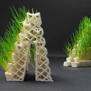 LayFilaments GROWLAY Filament – 1.75mm – 250 grams – Brown